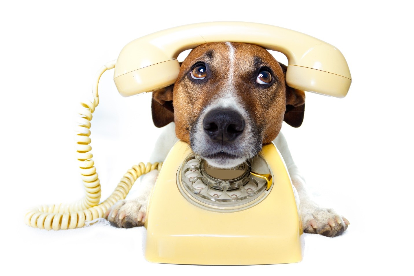 choosing-a-home-phone-provider